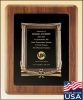 American Walnut Frame with Antique Bronze Casting Relief Cast Plaques